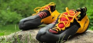 Best Beginner Climbing Shoes
